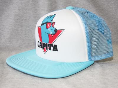 13-14 CAPITA FORM TRUCKER6